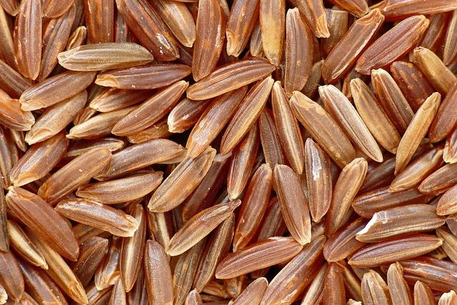 Miglior integratore di riso rosso fermentato